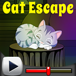 play G4K Cat Escape Game Walkthrough