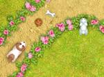 A-Maze-Ing Pet Park game