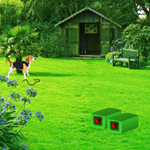 play Backyard Garden Escape