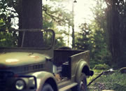 play Deep Forest Escape