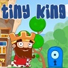 Tiny King game