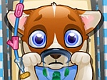 Puppy Surgery Game game