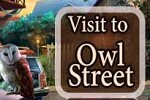 play Visit To Owl Street