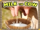 Milk The Cow Game game