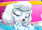 play Princess Pet Grooming