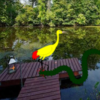 play Escape Yellow Bubulcus From Lake Side