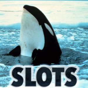 slots online gambling orca spiele