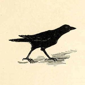 play Jimmy Crow