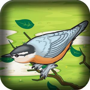 play Mad Birds War: Air Domination - Flying And Shooting Game