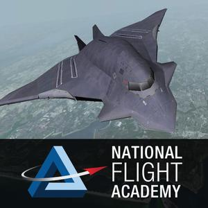 play National Flight Academy