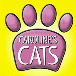 play Caroline'S Cat Game