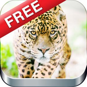 play Faster Animal & Living Creature Trivia & Puzzle