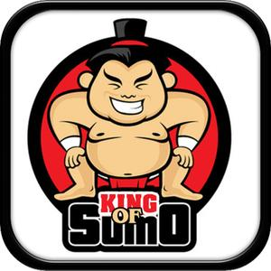 play King Of Sumo Wrestler: Japan Sport Sumo Fighter Combat Game