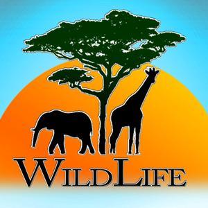play Wild Life Io