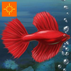 play Fish Tycoon Free For Ipad