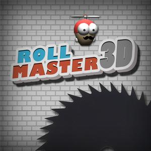 play Roll Master 3D