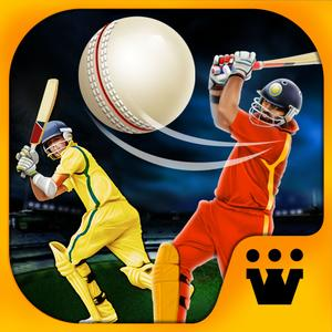 play World Cricket Champs - 2015