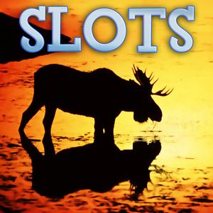 play Alaska Animals Slots - Free Slot Game Video Casino