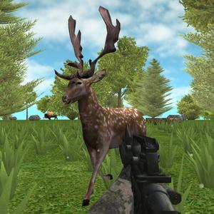 play Hunter: Animals In The Forest