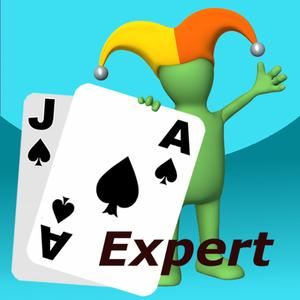 play Blackjack Expert