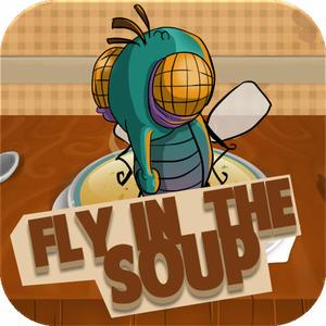 play Fly In The Soup
