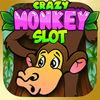 play Crazy Monkey Slot - Free Casino Slot With Big Win, Jackpots And Bonus