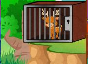 play Green Forest Deer Escape