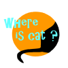 Where Is Cat game