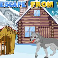 play Escape From Wolf