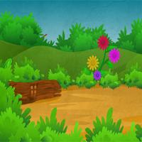 play Green Forest Parrot Escape