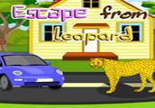 Escape From Leopard game