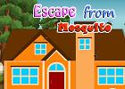 play Escape From Mosquito