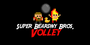 play Super Beardny Bros Volley