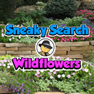 play Sneaky Search: Wildflowers