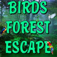 play Birds Forest Escape