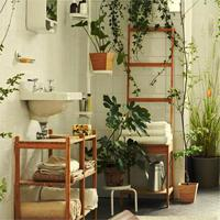 Plant Furnishing House Escape