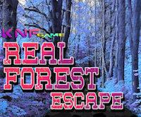Knf Real Forest Escape game
