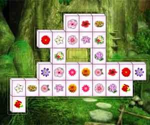 Flower Mahjong Deluxe game