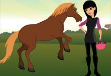 play Horse Ranches