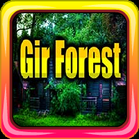 play Avm Gir Forest Escape