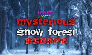 Knf Mysterious Snow Forest Escape game