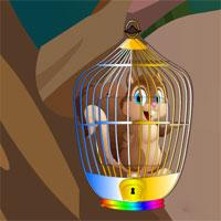 play Squirrel Escape From Cage