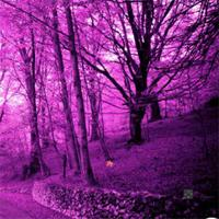 play Pink-Forest-Escape-1