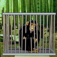 Bamboo Forest Monkey Escape game