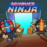 Geminate Ninja game