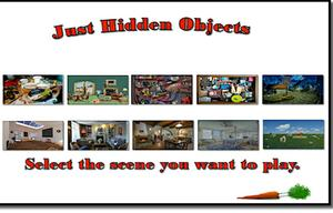 Just Hidden Objects game