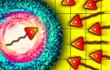 Terr.Io Territory game