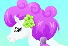 play Pony Hairstylist