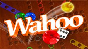 Wahoo: The Marble Board Game game