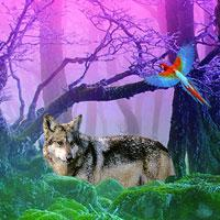 play Gray Wolf Forest Escape